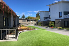 2018-Courtyard-Seattle-Turf