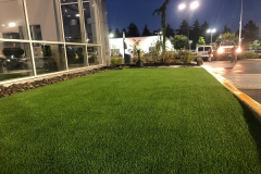2018-Synthetic-grass-in-Burien-by-Aguiar-Pavers